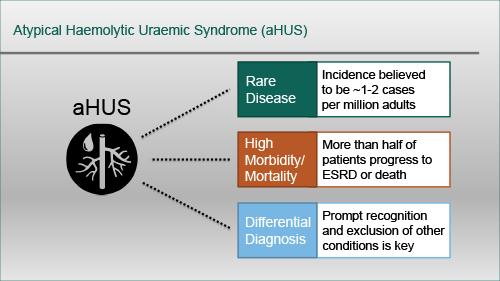 [PeerVoice]: 非典型溶血尿毒综合征的鉴别诊断:早期识别与诊断的有效策略